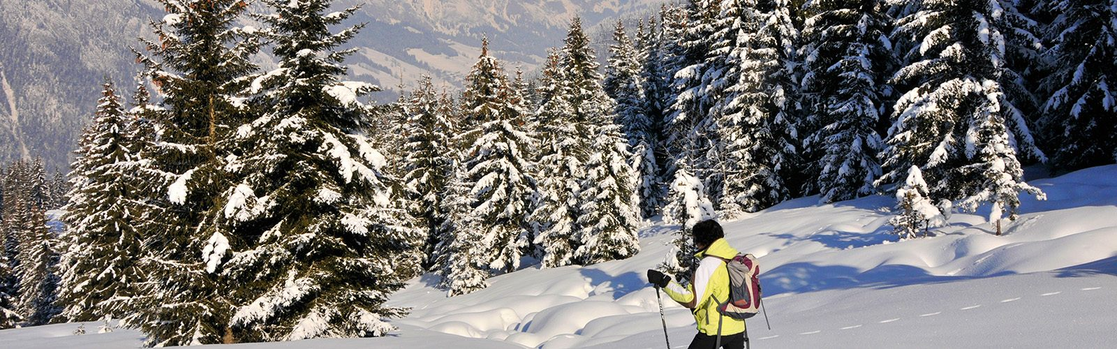 """Snowhoes hiking - """"The Autigny chalets"""""""